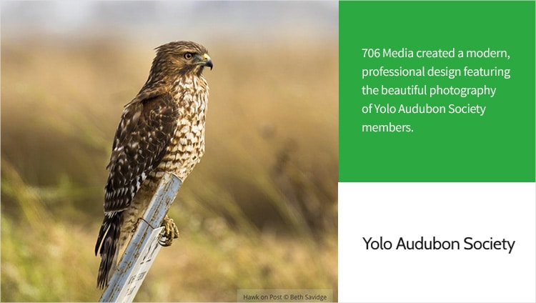 706 Media Project - Yolo Audubon Society